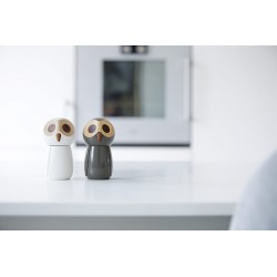 Salt and pepper owls